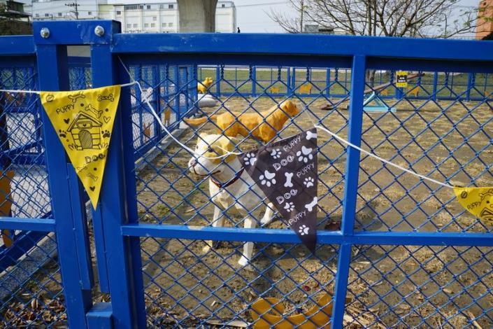 竹縣首座寵物運動公園   3月4日 在竹東河濱公園啟用
