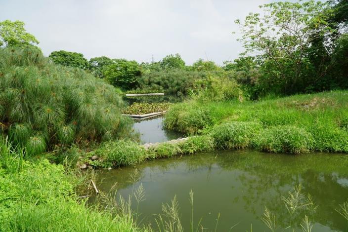 頭前溪環境教育夏令營DSC09443_調整大小.JPG
