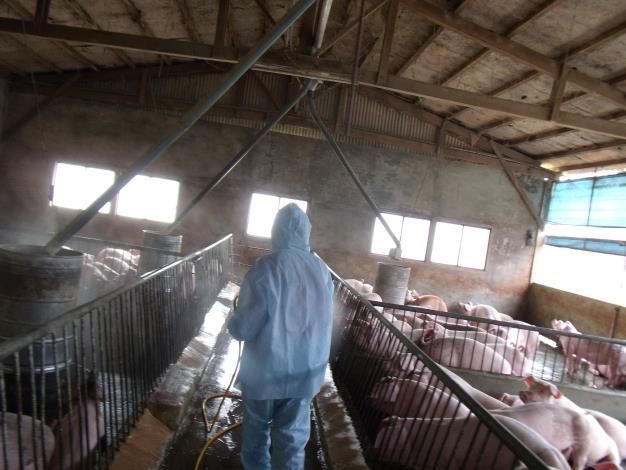 全面防堵非洲豬瘟疫情  新竹縣成立非洲豬瘟災害應變中心 共2張圖片