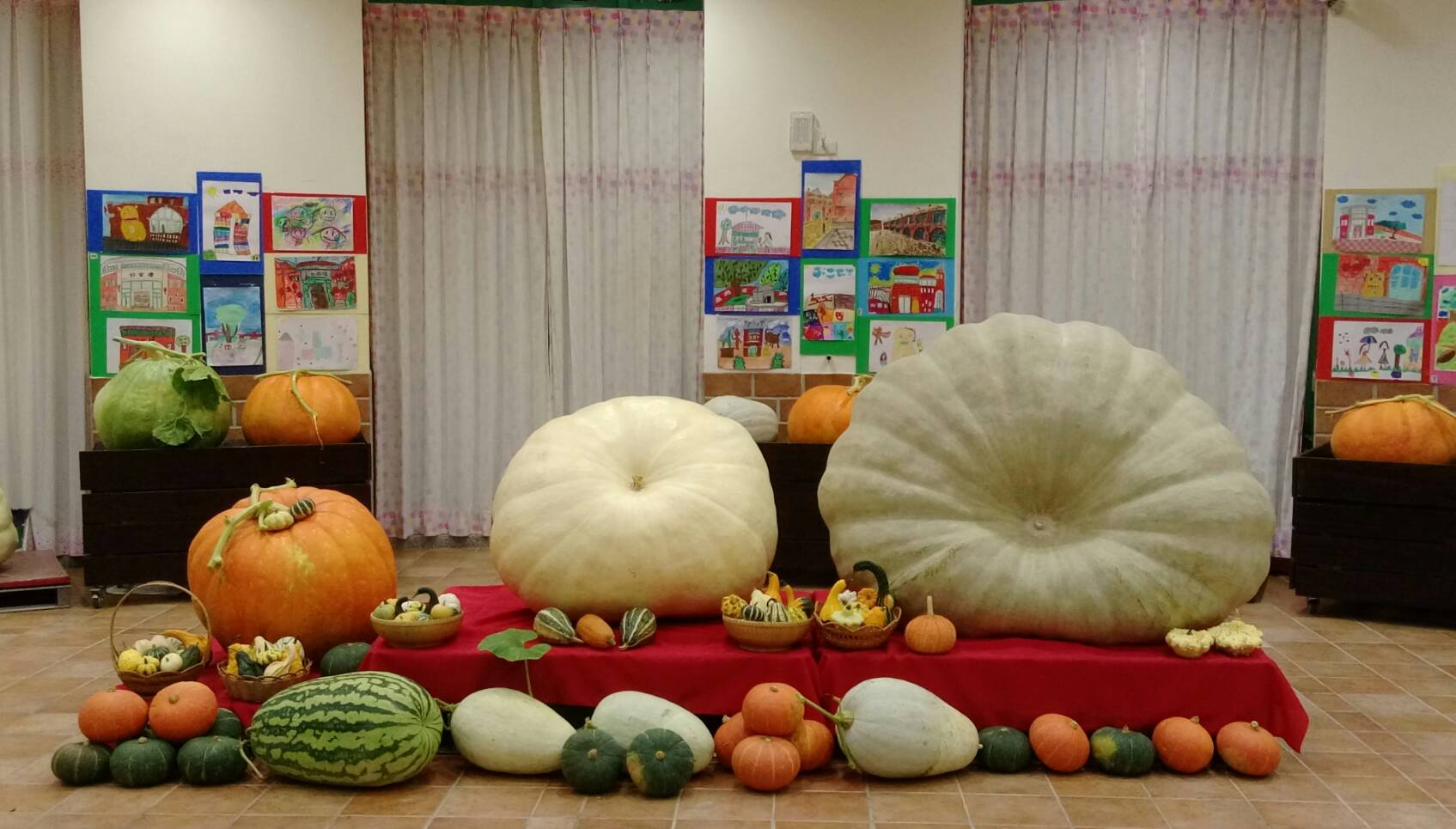湖口鄉瓜瓜節產業文化活動 本週末邀您來嘗瓜看瓜