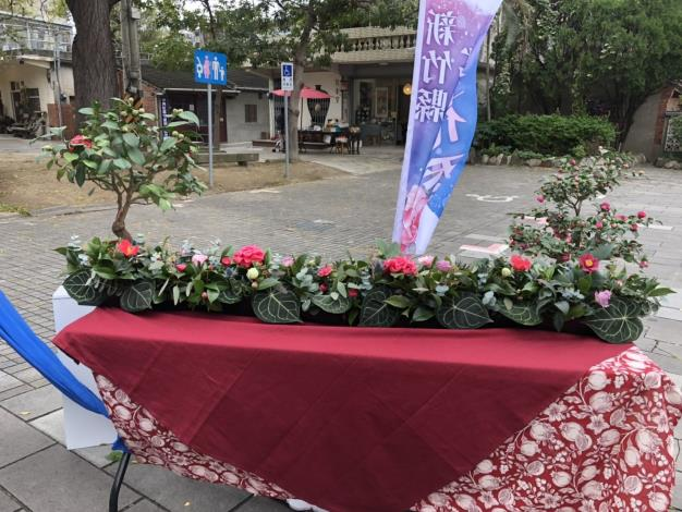 新竹縣茶花季今明2天新瓦屋熱鬧開展 共4張圖片